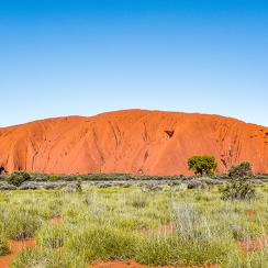 オーストラリア旅行・ツアー