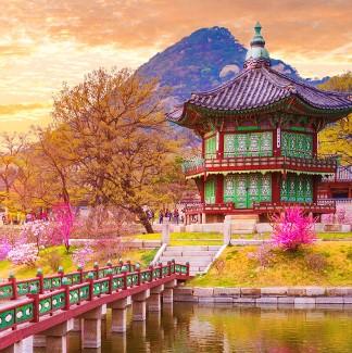 韓国旅行・ツアー
