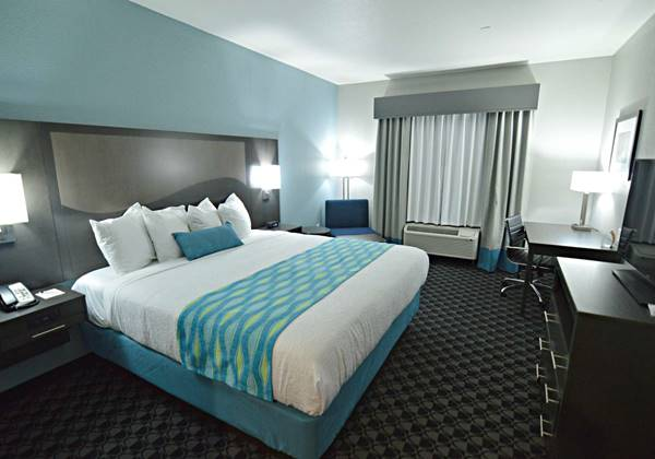 Mobility Accessible King Guest Room