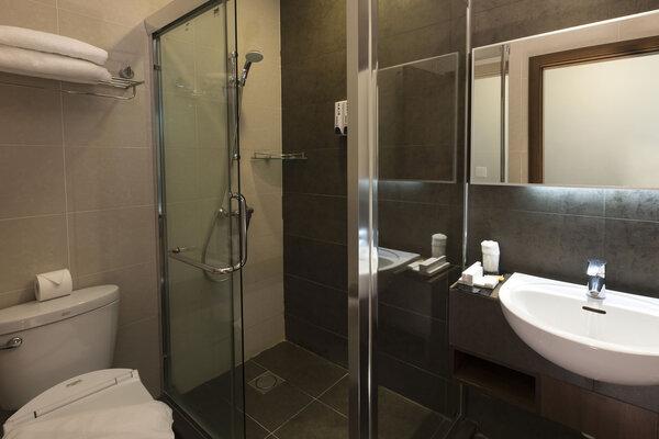 standard room-bathroom