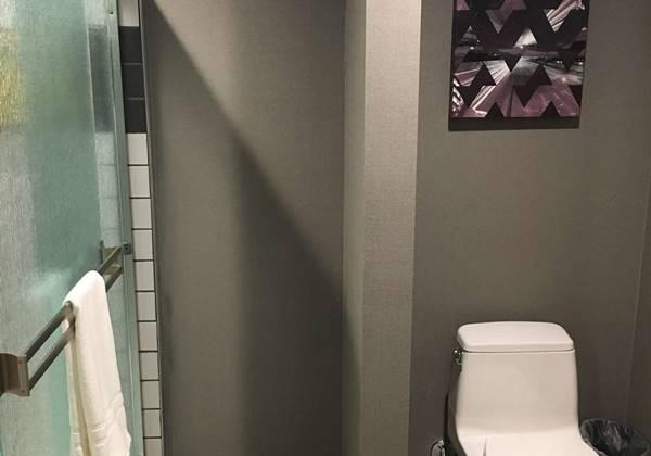 Large King Guest Bathroom