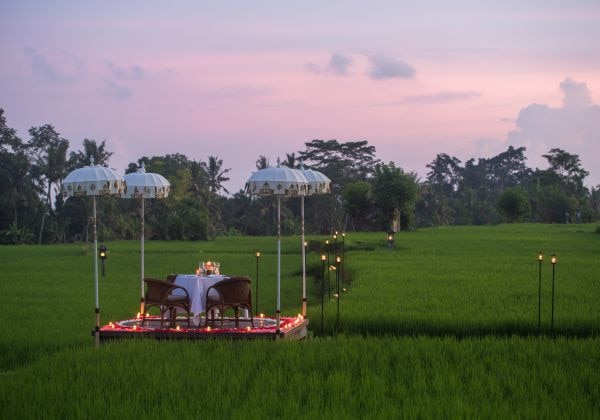 Dining Experiences Rice Paddy Romance