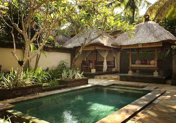 Garden Pool Villa - Pool