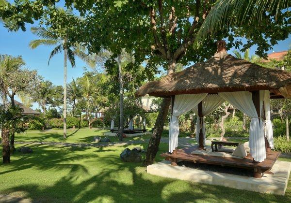 Tropical Lush Garden