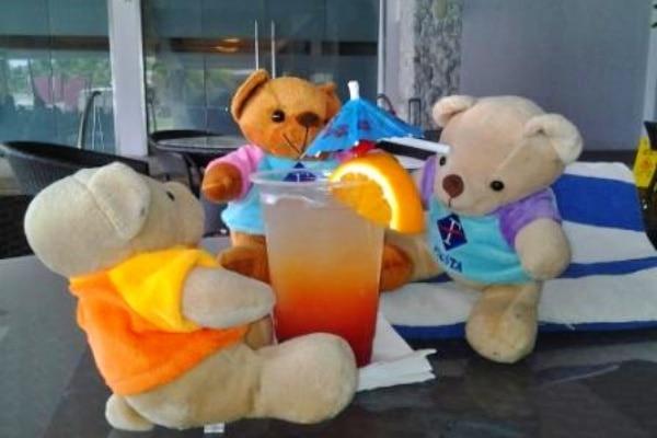 Fiesta Bears