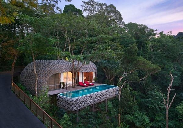 Bird's Nest Pool Villa