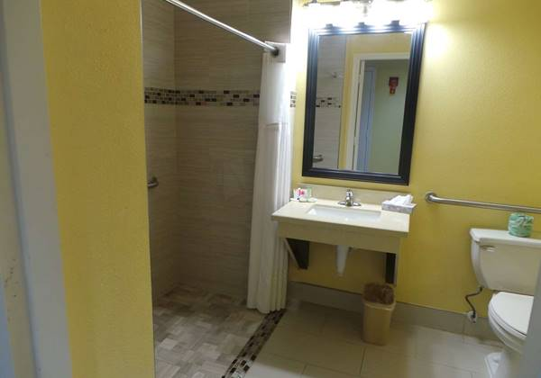 Mobility Accessible Room Roll-In Shower