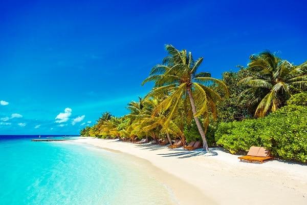 【H.I.S.】リリィ ビーチ リゾート&スパのホテル詳細ページ|海外ホテル予約