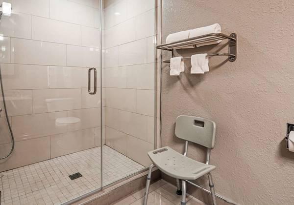King Guest Suite Shower