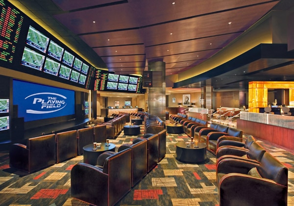 The Playing Field Race and Sportsbook