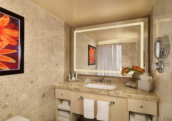 Deluxe Room Bathroom