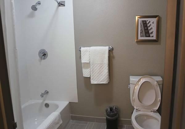 Standard King Room Bathroom