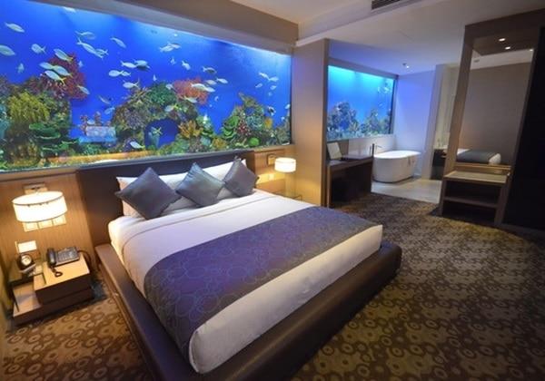 Aquarium Supreme Room