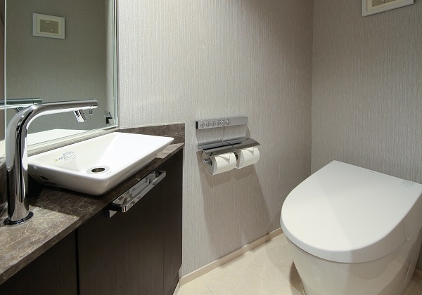 Sandard Toilet