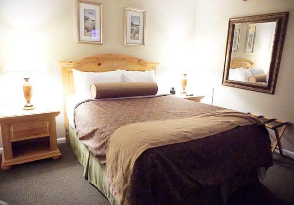 Family Suite Queen/Bunk Beds